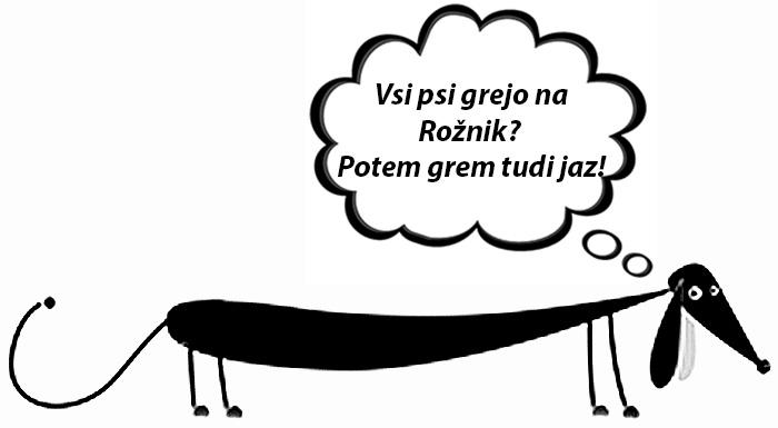 Pasji salon toutou_Rožnik 2014